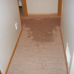 Local Water Damage Restoration
